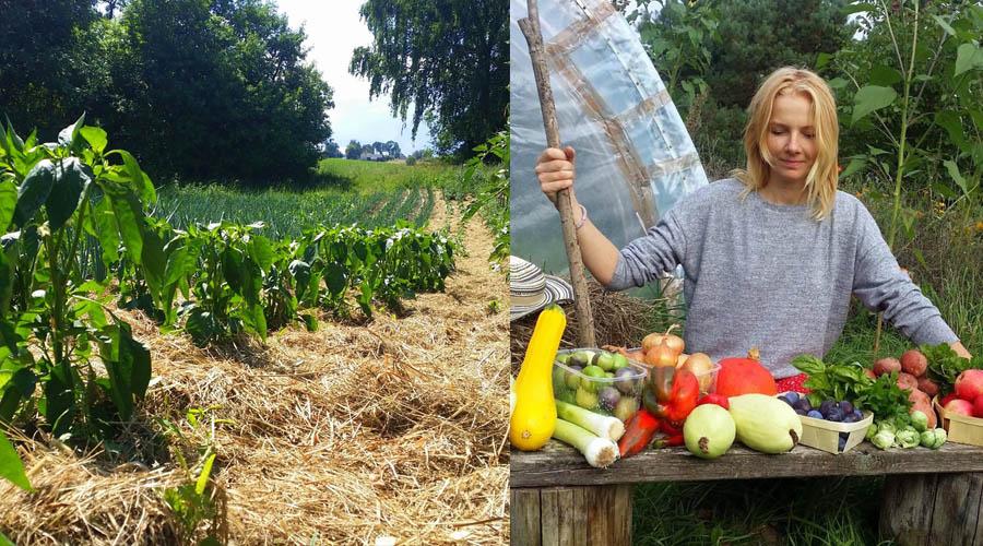 """Kaip gamtinės žemdirbystės """"Vilkės ūkis"""" tapo tvariu ir sėkmingu verslo kaime modeliu"""