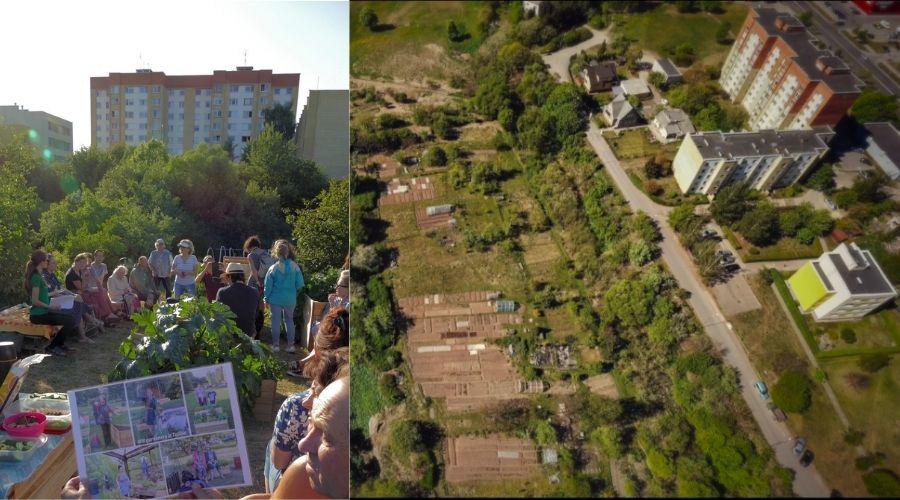 """""""Šilainių sodai"""" pavyzdys, kodėl sodininkystė mieste yra šiuolaikiškumo dalis"""